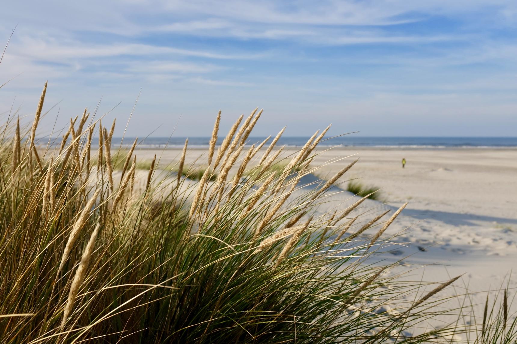 Juist Strand Nordsee